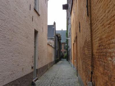 BPK en statdswandeling Mechelen 2011 043 (960x1280)